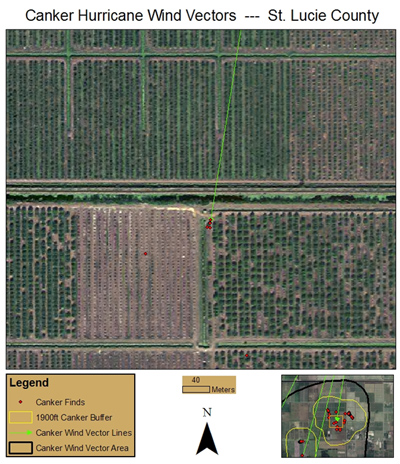 Fig. 6. Image of citrus area with new citrus canker finds after 2004 hurricanes.  Red points are affected trees and line indicates wind vector through a windbreak area.  Clump of red (infected) points in left corner of block on right are over a water area without a windbreak.