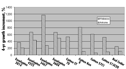Fig. 3. The percent increase in plant height over 4 years of various windbreak species in a trial conducted at the UF/IRREC, Fort Pierce.
